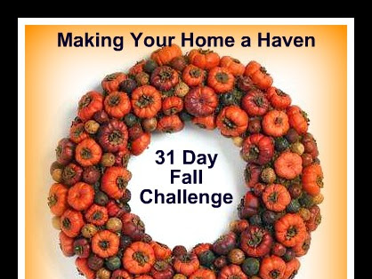 Making your Home a Haven Challenge