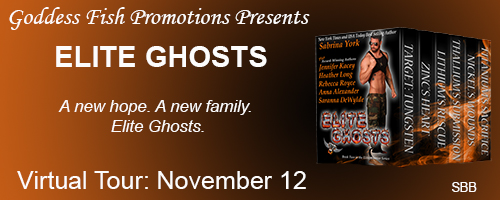 http://goddessfishpromotions.blogspot.com/2015/10/book-blast-elite-ghosts-by-jennifer.html?zx=105cfefa8e0da6a4
