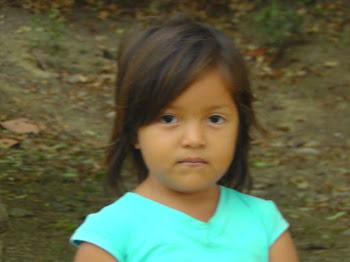 Niña de cuatro años afirma haber tenido contacto con un extraterrestre quien la saludó.