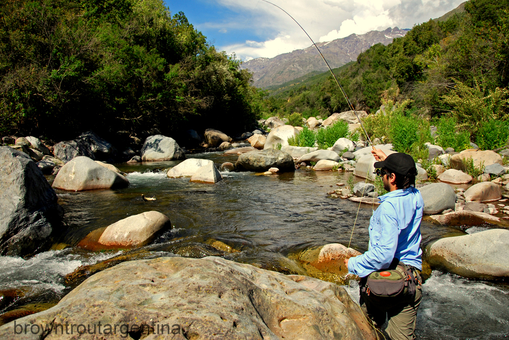 BROWN TROUT ARGENTINA: Soy pescador de la Zona Central
