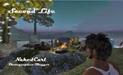 For Best Coverage of Second Life's Gay Club Scene- Head Over To NakedCarl's Blog