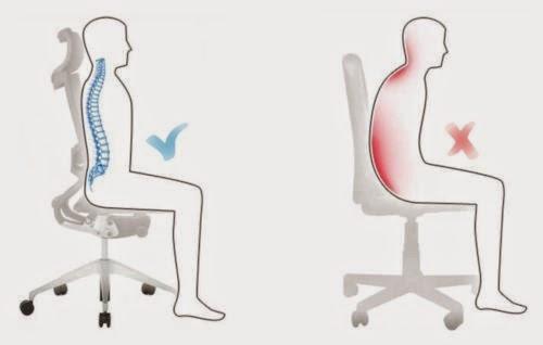 Las vértebras que se han conseguido sheynogo del departamento la invalidez