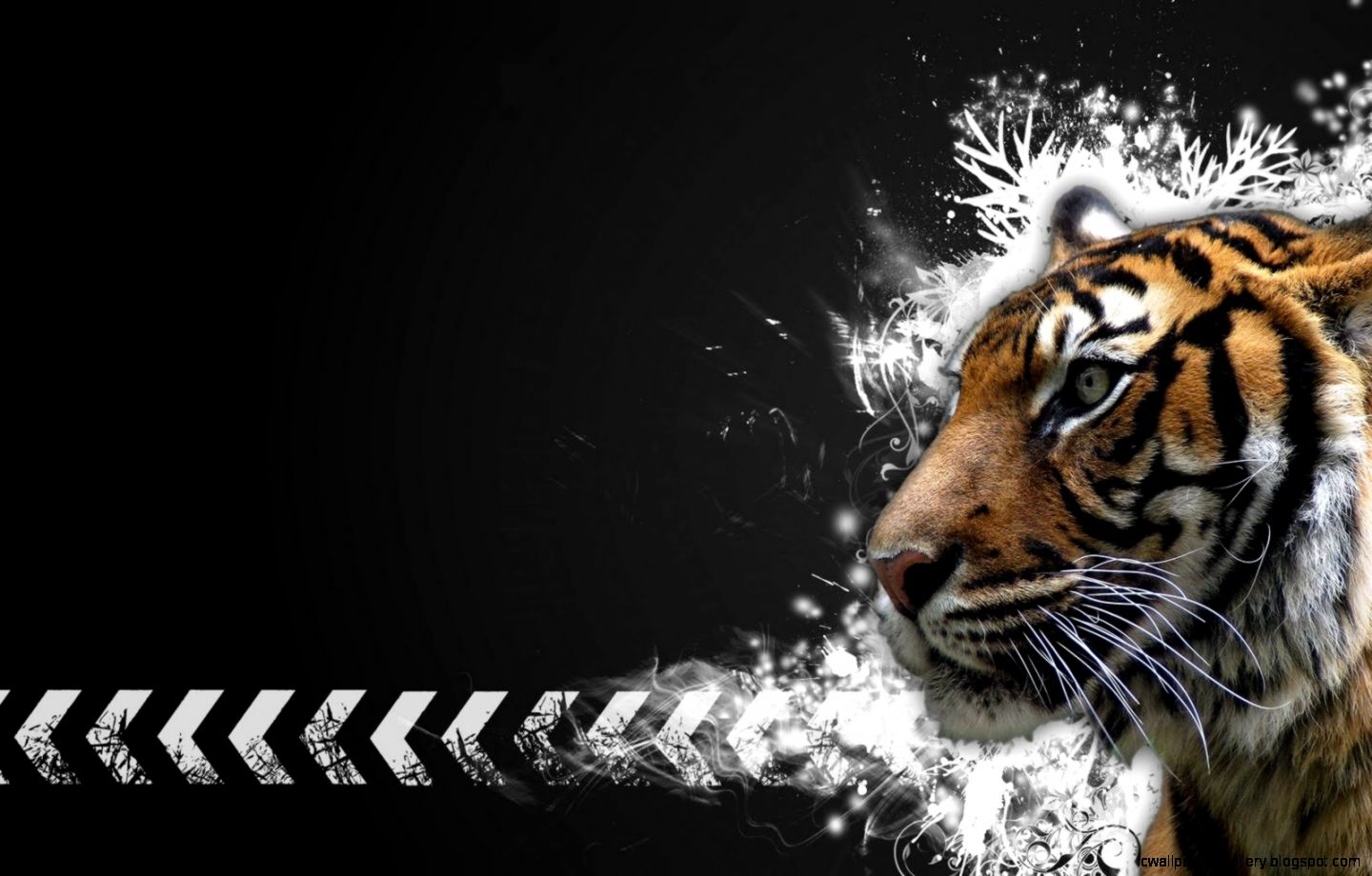 Beautiful Wallpaper High Resolution Tiger - high-definition-tiger-wallpaper-for-free-download  HD_346528.jpg