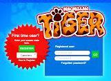Mcmillan TIGER