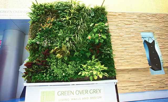 Empresa canadense é especializada em jardins verticais green over grey