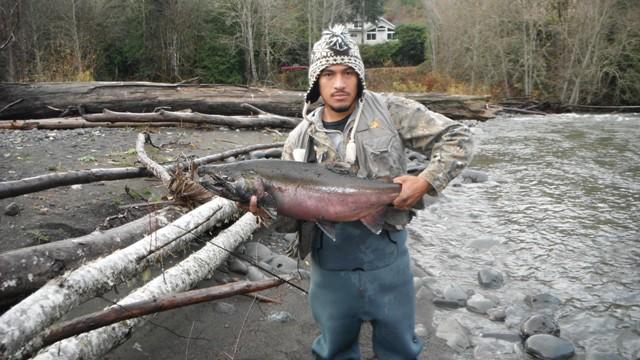 Forever fishing washington state salmon and steelhead anyone for Salmon fishing in washington
