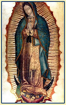 LA VIRGEN DE GUADALUPE EN EL CENTRO HISTRICO