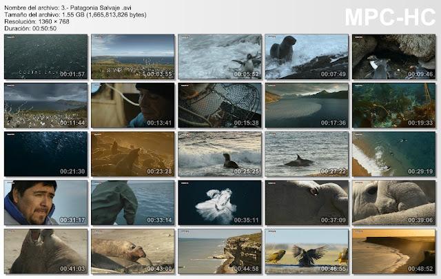5GB|BBC|Patagonia Salvaje|HD 720p|3-3|Mega|Taykun7000