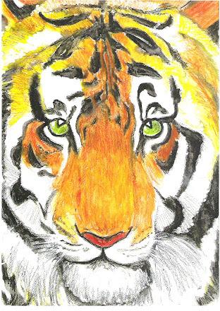 Tiger face pic