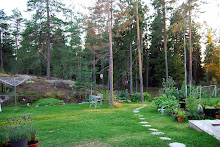 Här är min trädgård