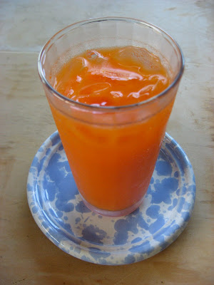 carrot celery ginger juice for migraine relief