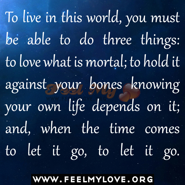 three things to live life to