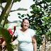 A Dominican Retrospective: Part 7 of 10