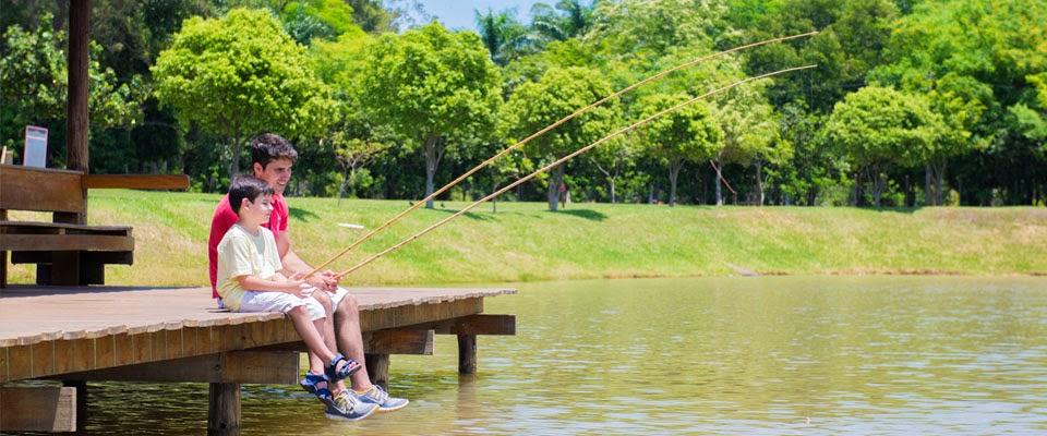 blue tree park lins lago pesca