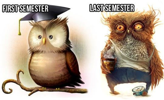 Life Of Engineering Student Funny Picture