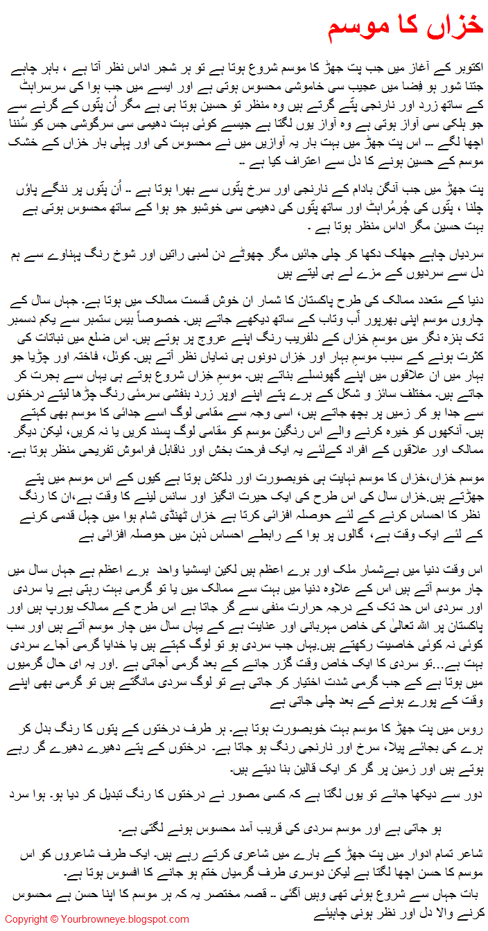 Essay on computer in urdu