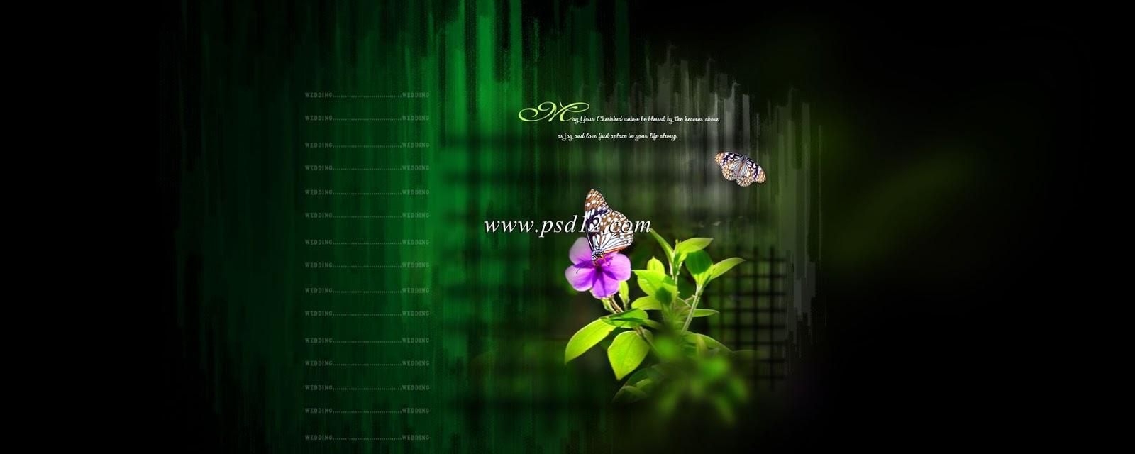 12x30 PSD Karizma Album Backgrounds