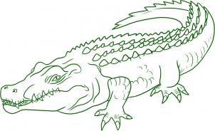 Crocodile on Story of Kids in English for The Crocodiles and The Dayaks
