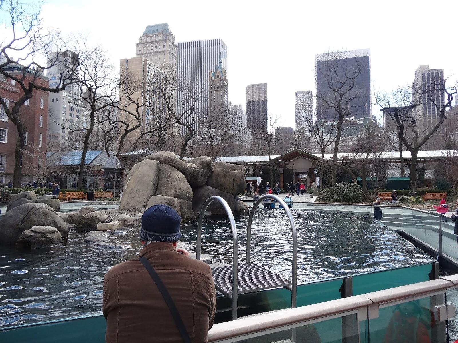 Stu The Zoo Central Park Zoo New York City