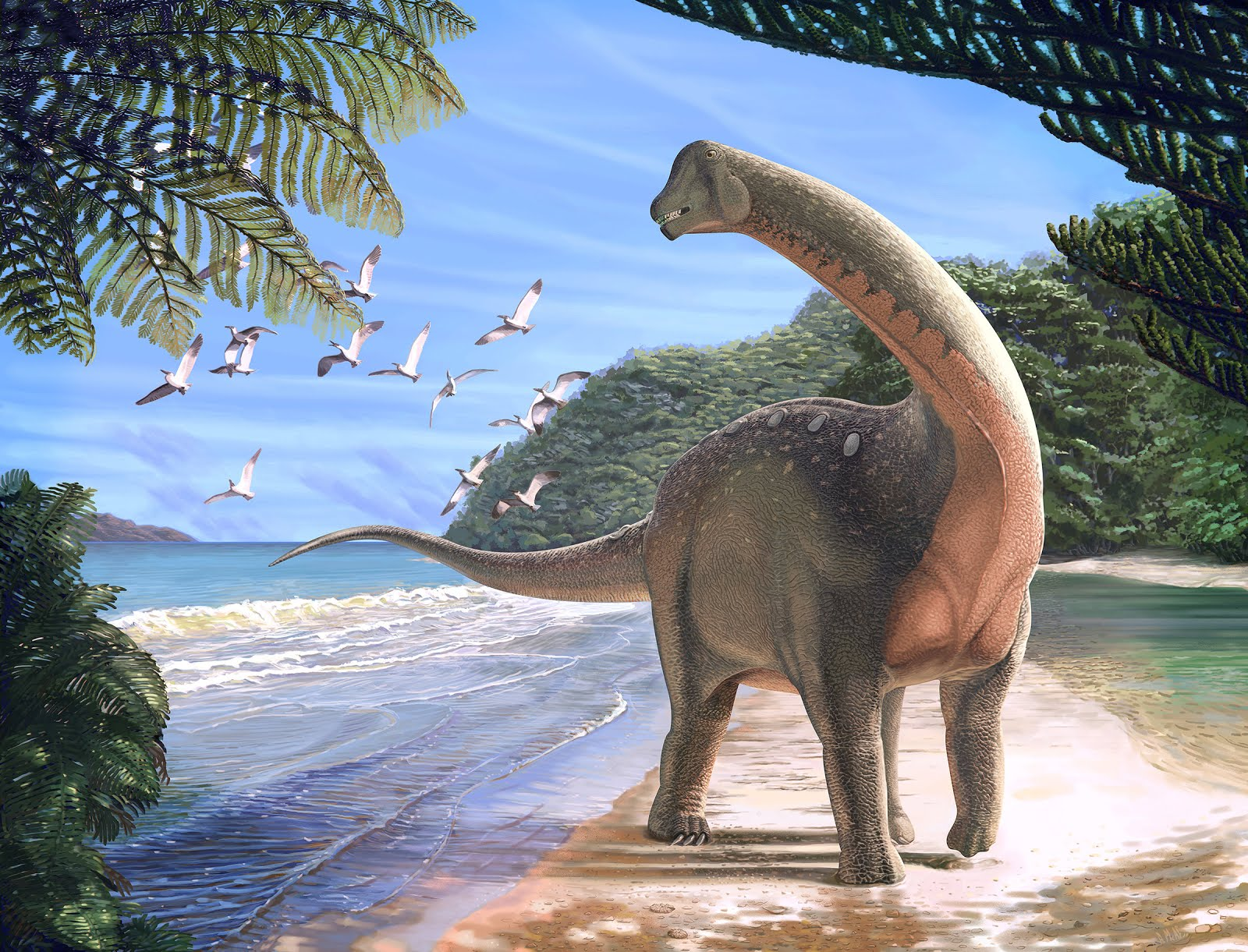 an overview of the dinosaur species from the ancient history Find out more about the history of why did the dinosaurs die out is the name given to the die-off of the dinosaurs and other species that took place some 65.
