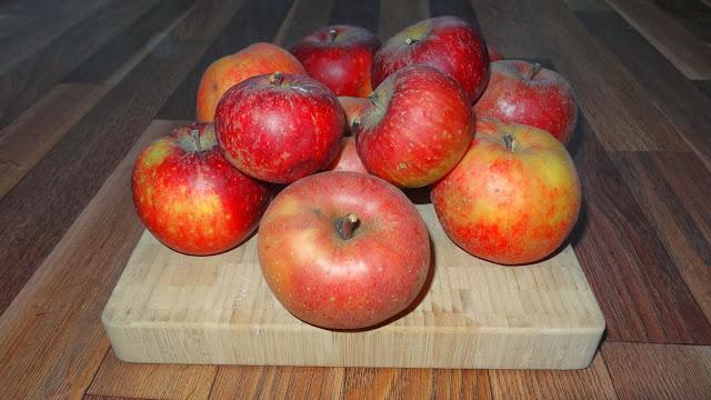 Äpfel frisch aus dem Garten