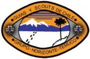 Grupo HORIZONTE. Temuco