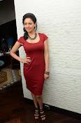 Pooja kumar new glam pics-thumbnail-9