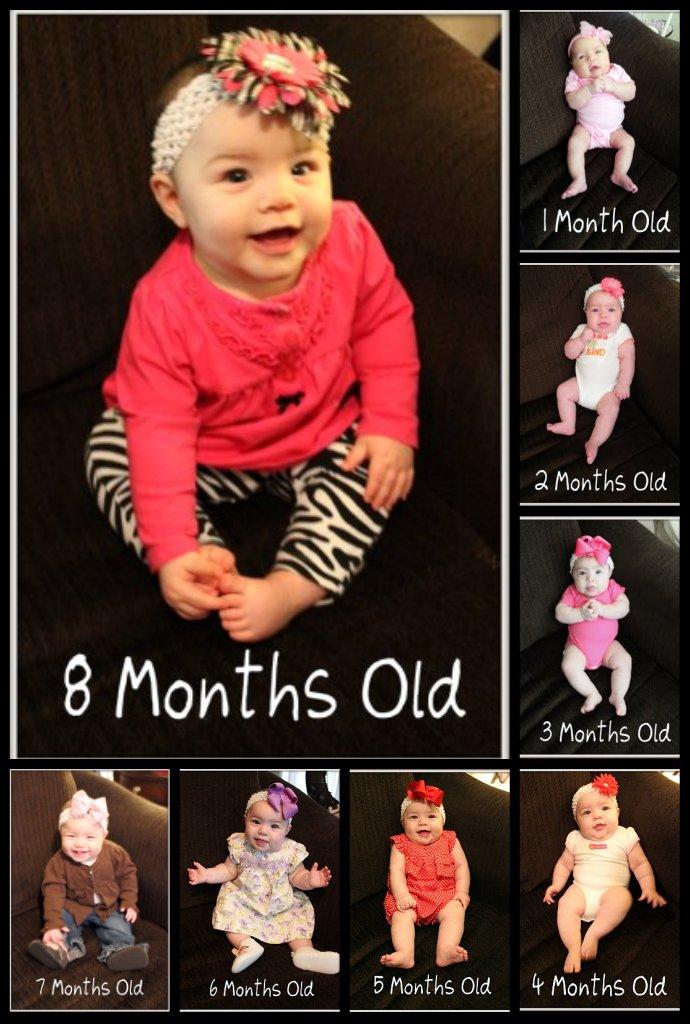 The Estes Family: January 2012