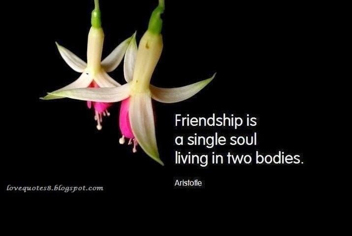 wallpaper quotes: Love Quotes Friendship Quotes Quotations Messages ...