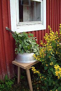 Vihta saunan seinustalla - Copyright Kuvatoimisto Albumi - www.albumi.fi