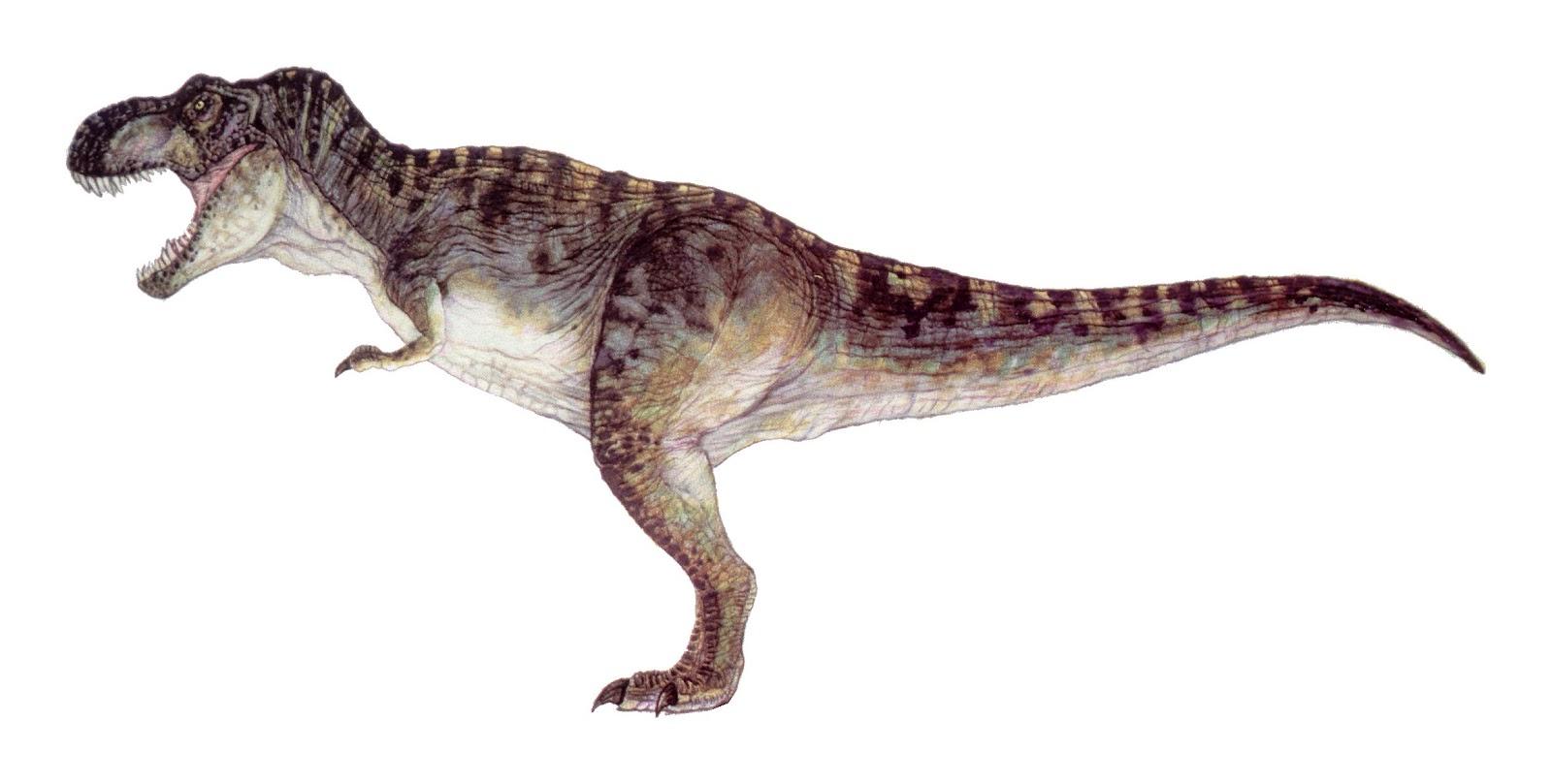 http://3.bp.blogspot.com/-ed7xZYklmSg/T3-iI6ak0nI/AAAAAAAAGNI/9r4r56MpF8g/s1600/The_Lost_World_Jurassic_Park_Bull_T-Rex.jpg