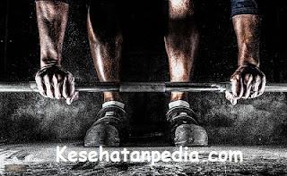 Program latihan fitness untuk menambah massa otot