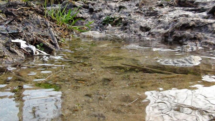 Tips Mencegah Penyakit Yang Terbawa Oleh Air