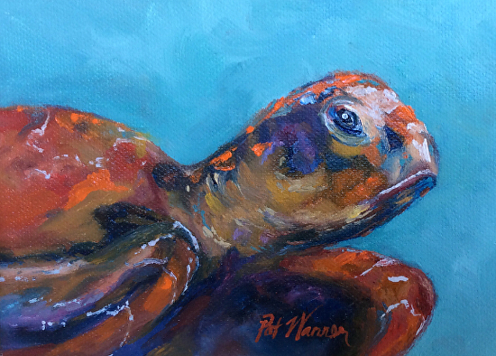 Contemporary artists of georgia sea turtle sea life oil for Sea life paintings artists
