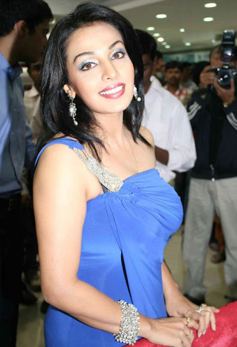 asha saini in bajaj electronics room asha saini latest photos
