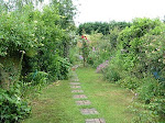 Our English Country Garden