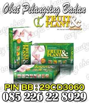 obat pelangsing badan herbal alami fruit plant obat