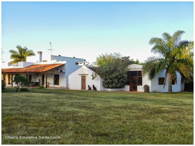 Fieles guardianes - Chacra Educativa Santa Lucía