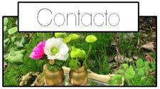 http://www.vaportiquerida.com/p/contacto.html