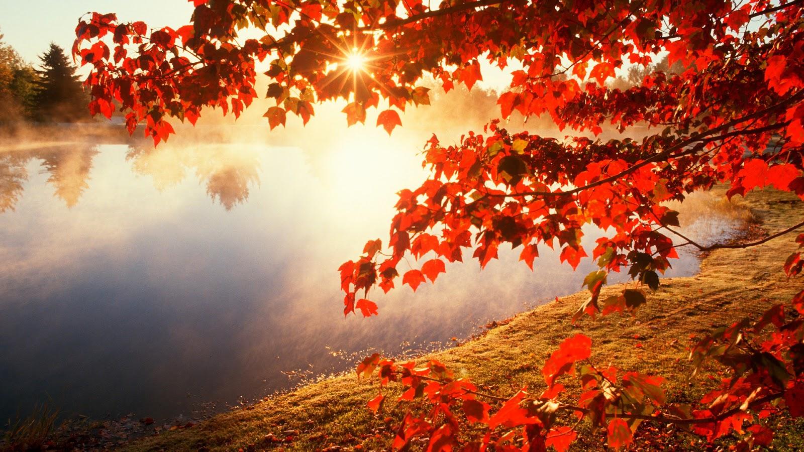 http://3.bp.blogspot.com/-efwbgwDZC9E/T7W33VOEIjI/AAAAAAAADXI/FVxaFW5dvKM/s1600/Red-autumn-morning.jpg