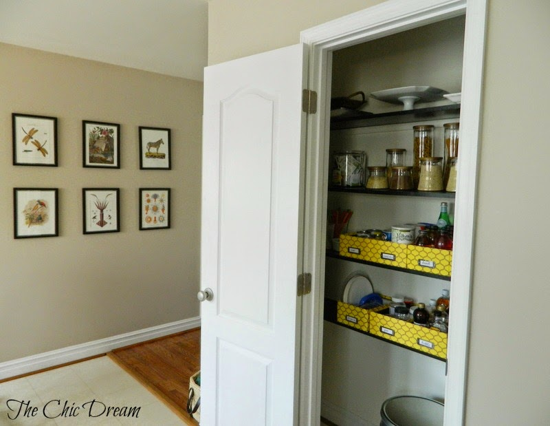 Pantry with photo boxes for storage!