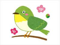 梅の木にとまる鶯