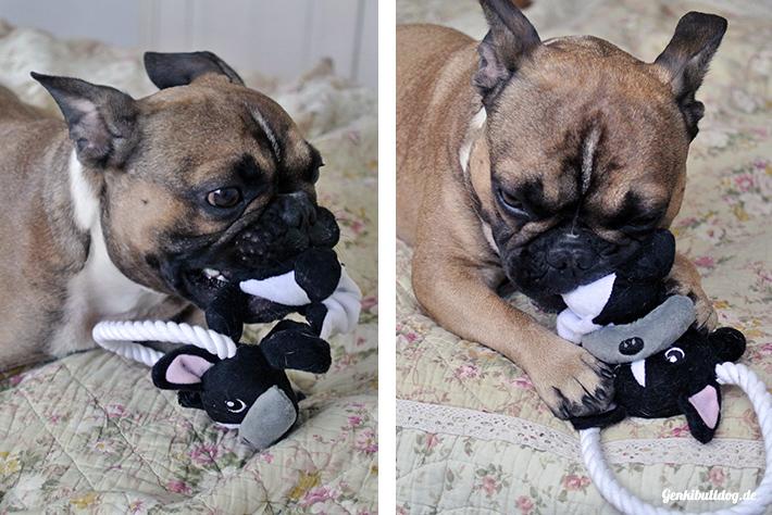 Hundespielzeug Französische Bulldogge