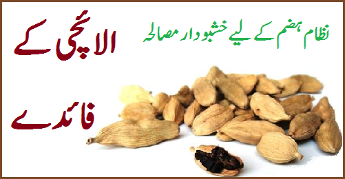 Elaichi Benefits In Urdu