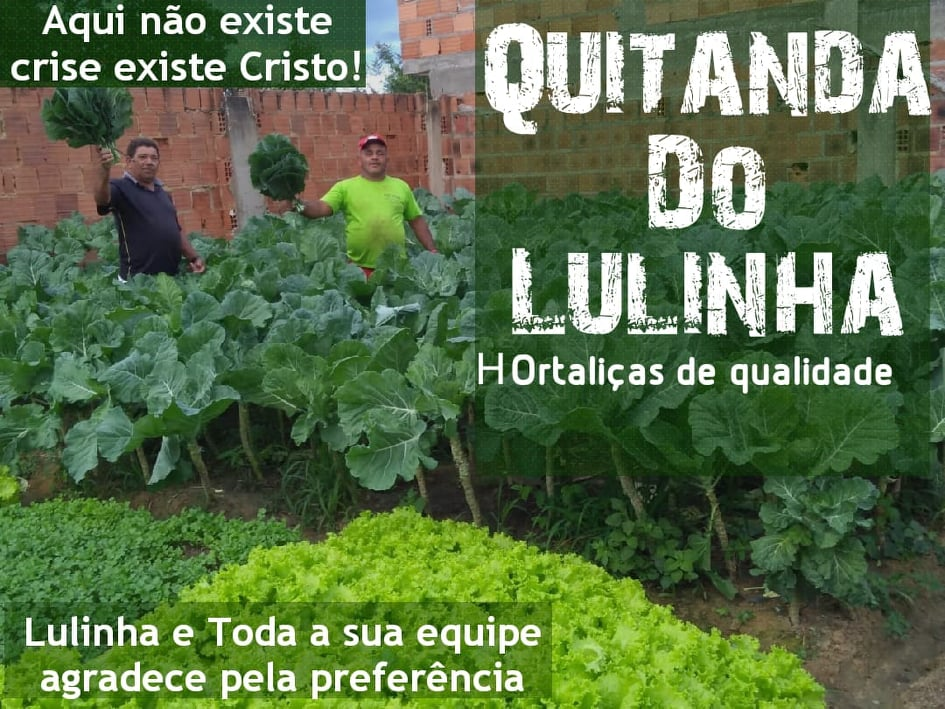 QUITANDA DO LULINHA