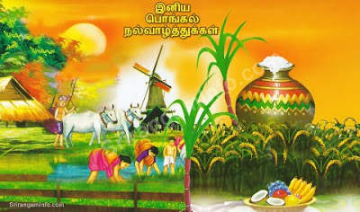 2013 Pongal tamil wallpapers
