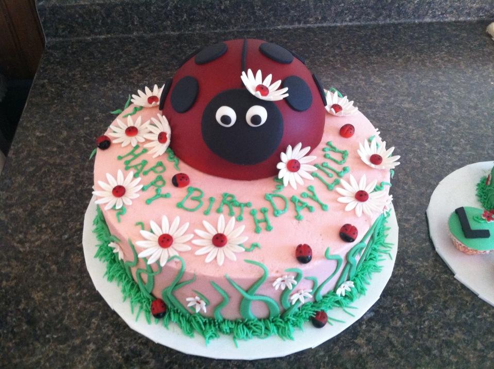 Cakes By The Sugar Cains Ladybug Birthday Cake