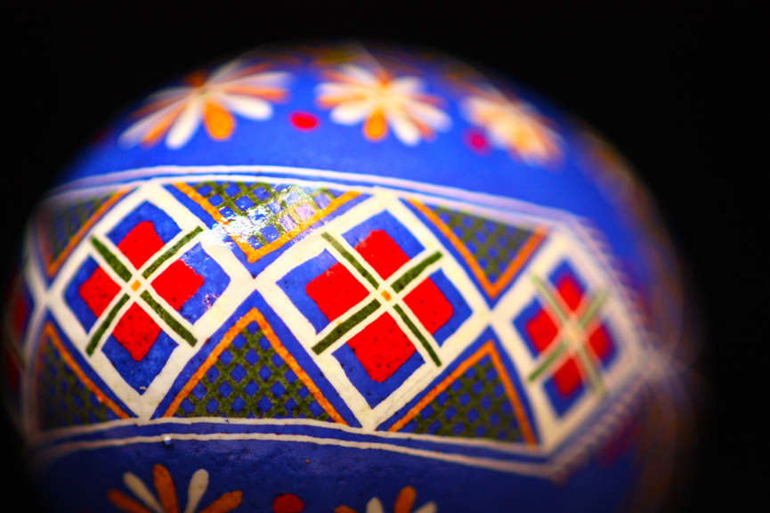 Cosmos Flowers and Traditional Scarves in Sakvy Pattern Chicken Egg Pysanka