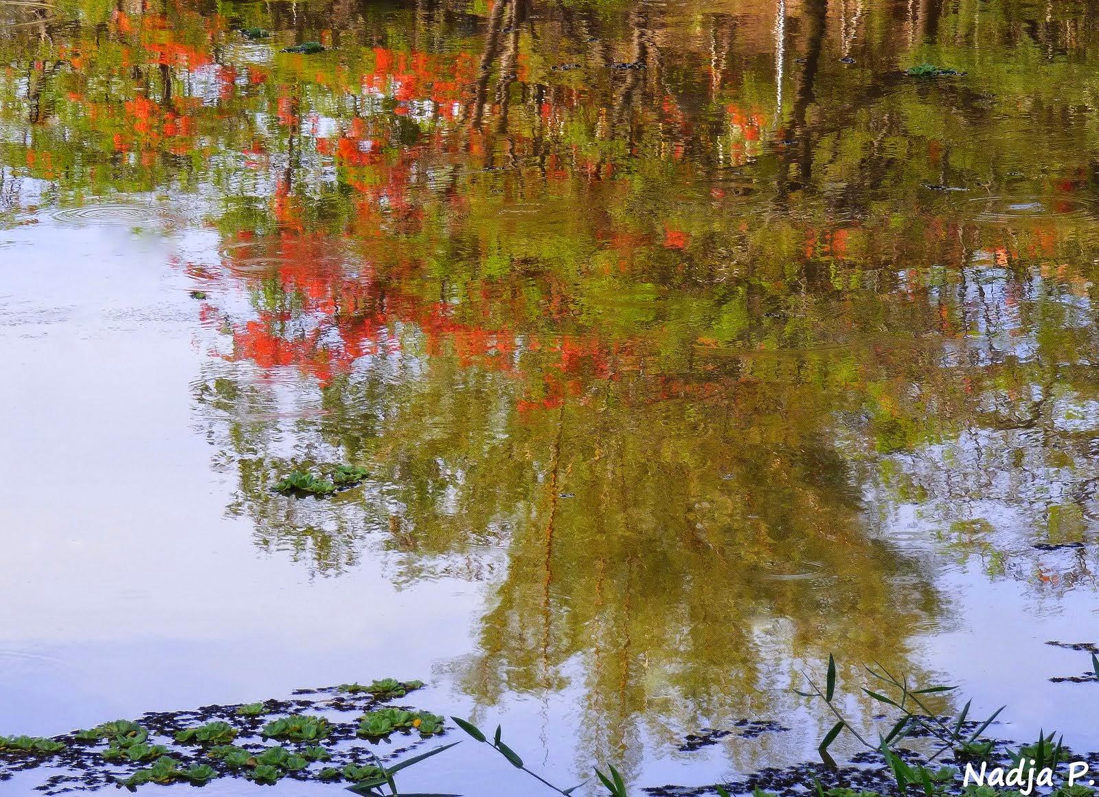 Monet..