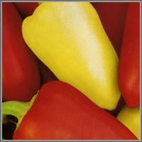 Сладкий перец сорт «Белоснежка»